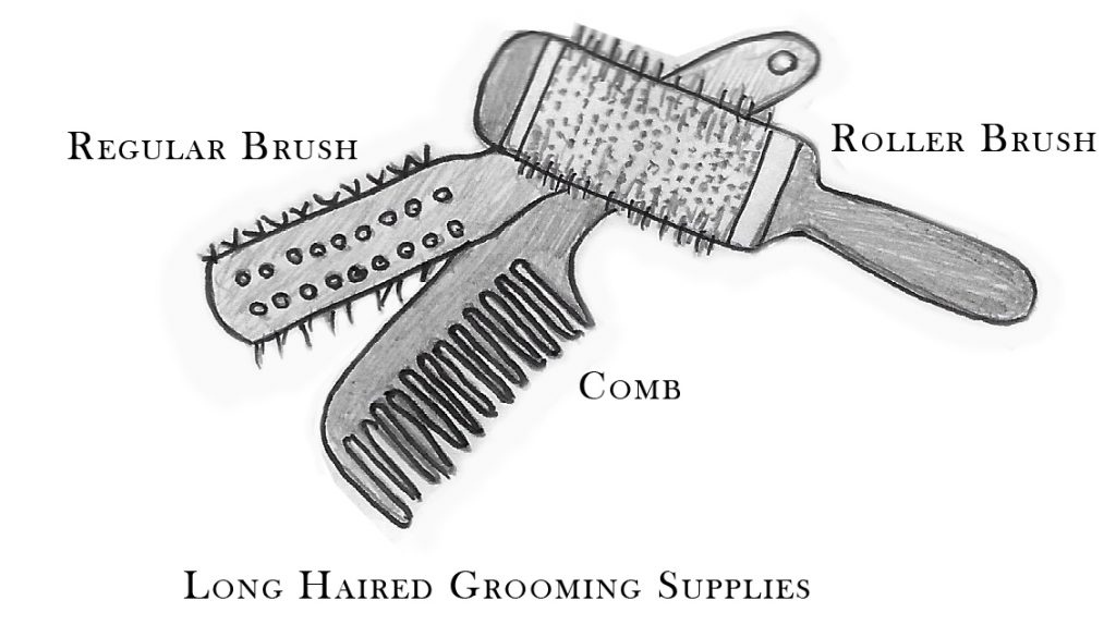 long-haired grooming tools for the Havanese