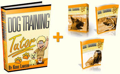 A total set of tutoring books about dog training!