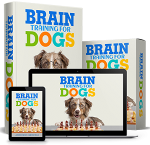 A full set of brain training materials to teach your dog obedience in a mentally stimulating way!