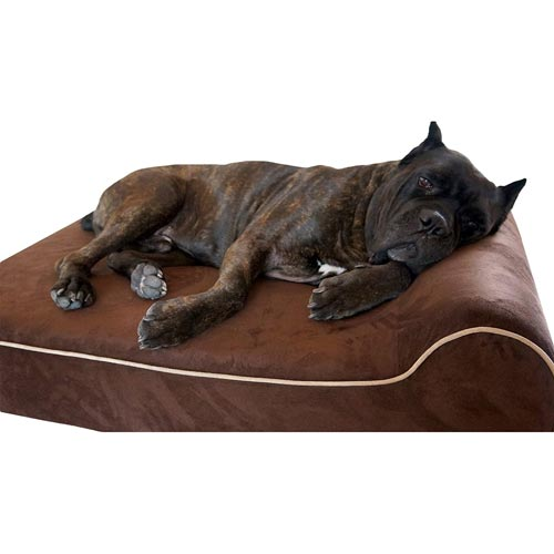 Bully-Beds-Orthopedic-Memory-Foam-Dog-Bed