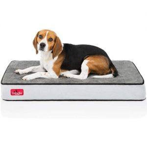 dust-mite-free-dog-beds-Brindle-Waterproof-Designer-Memory-Foam